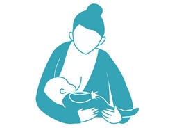 Breastfeeding positions. The cradle hold.